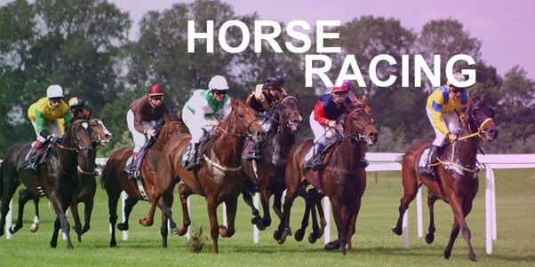 Horse Racing Rules – What Are The Major Rules for Horse Racing