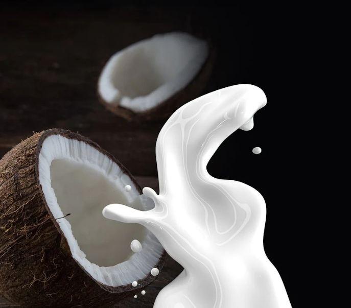 coconut, coconut milk