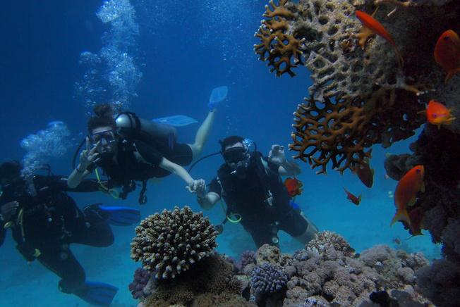 Picture of three people doing scuba diving with coral reefs